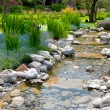 Garden with pond in asian style - Stockfoto