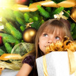 Pretty girl with present near the Cristmas tree — Stock Photo #7676391