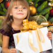 Pretty girl with present near the Cristmas tree — Stock Photo #7676401