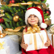 Pretty girl with present near the Cristmas tree — Stock Photo #7676443