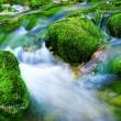 Mountain river — Stock Photo #7676561