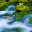 mountain river — Stock Photo #7676565