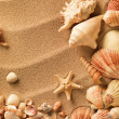 Foto Stock: Seshells with sand as background