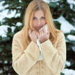 Winter portrait of beautiful smiling woman - Stok fotoğraf