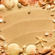 Sea shells with sand as background — Stock Photo #7677045