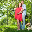 Pregnant woman in park with her husband — Stock Photo #7677051