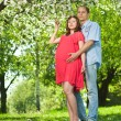 Pregnant woman in park with her husband — Stock Photo #7677053
