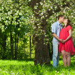 Pregnant woman in park with her husband - Stockfoto