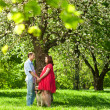 Pregnant woman with her husband in park - Stock Photo