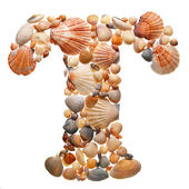 Summer alphabet made of seashells — Stock Photo