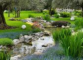 Zahrada s rybníkem v asijském stylu — Stock fotografie
