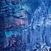 Frosty pattern on glass — Stock Photo