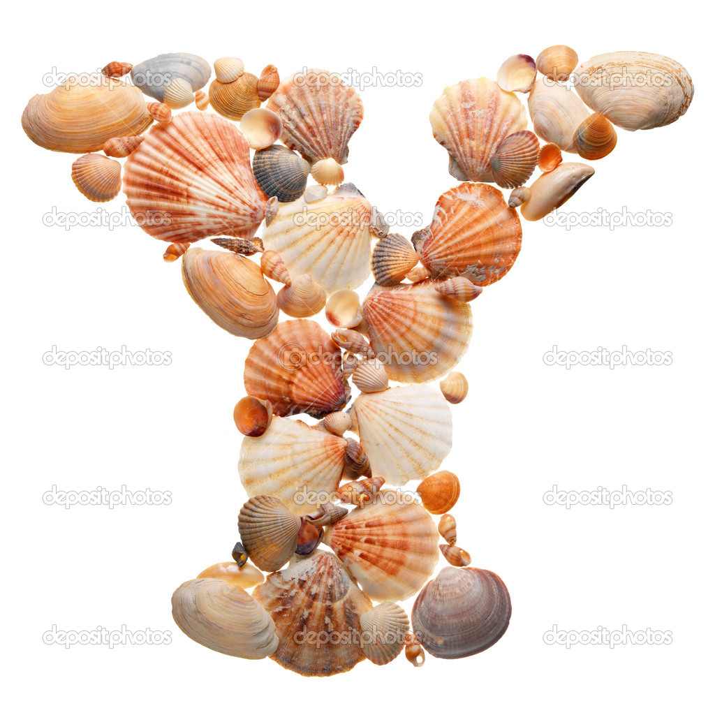Summer alphabet made of sea shells during travel stock for What are shells made of