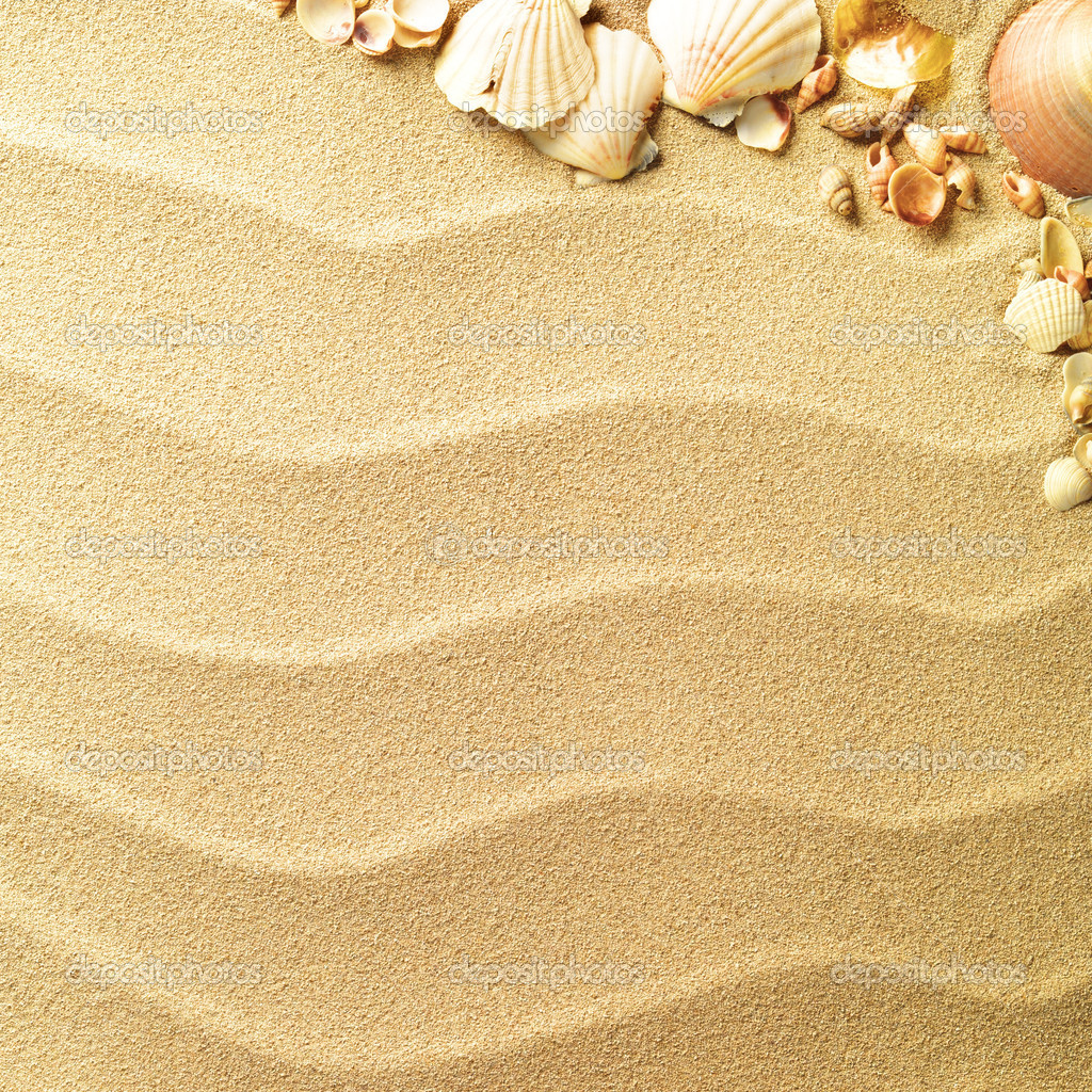 Sea shells with sand as background  Stock Photo #7676864