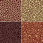 Abstract seamless texture leopard giraffe skin — Stock Photo