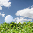 Stock Photo: Close up golf course
