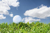Close up golf course — Stock Photo