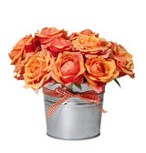 Bouquet of orange roses in the pot — Stock Photo