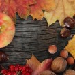 Thanksgiving background — Foto de Stock