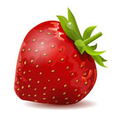 Ripe strawberry — Stock Vector