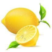 Realistic lemon and half — Stock Vector