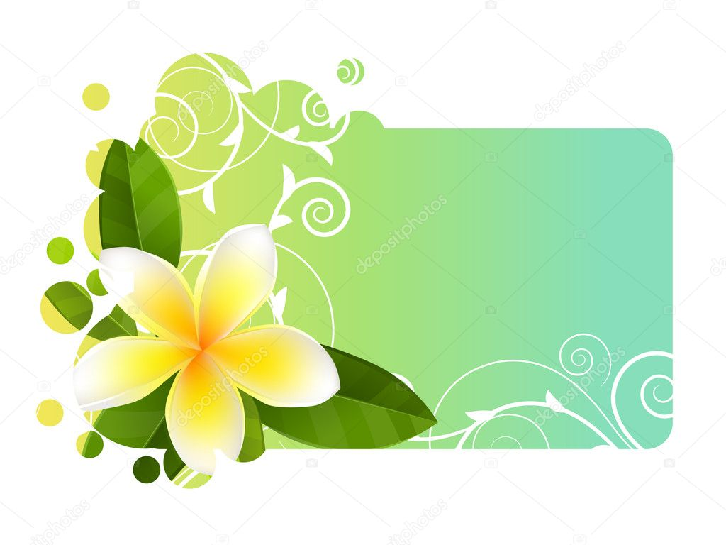 Tropic light blue banner with frangipani  Stock Vector #6878915