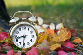 Alarm clock at autumn — Stock Photo