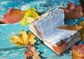 Bible open on the bench in the park — Stock Photo