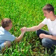 Stock Photo: Brothers in field