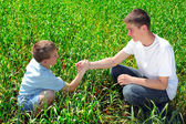 Brothers in the field — Stock Photo