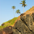 Rocky coast of Arabisein Goa — Stock Photo #6934668