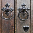Tower of London – Door Knocker - Stock Photo