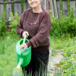 The elderly woman works on a kitchen garden — Foto de Stock