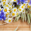 Beautiful flowers in a basket — Stock Photo