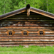 Stock Photo: The old wooden house