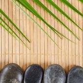 Spa a stone — Stock Photo