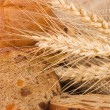 Stock Photo: Fresh bread with ear of wheat