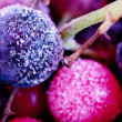 Frozen berries — Stock Photo #7135993