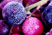 Frozen berries — Stock Photo
