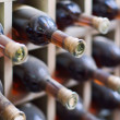 Dusty wine rack. — Stock Photo #7416514