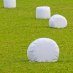 Тюков соломы, завернутые в пластик — Стоковое фото #7821088