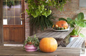 Farm holidays decorations — Stock Photo