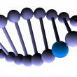 Gene in DNA. - Foto Stock