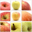 Collage of apples from nine photos — Stock Photo