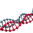 Gene in DNA. — Stock Photo