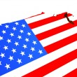 The American flag — Stock Photo #7833483