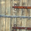 Old wooden gate. — Stock Photo #7838633