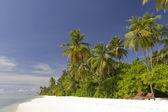 Beach scene in the Maldives — Stock Photo