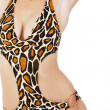 Female body in leopard swimsuit - Stock Photo