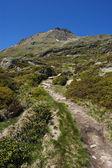 Mountain path — Stock Photo